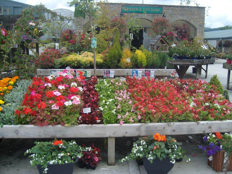 Garden Displays Moygannon Nurseries Amp Garden Centre
